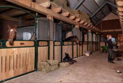 Paardenstalling op texel bij hippo hoeve texel for Paard aan huis te koop